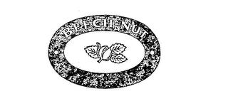 Beech-Nut Nutrition Corp. (D) HBS Case Analysis