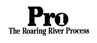 PRO 1 THE ROARING RIVER PROCESS