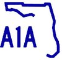 A1A Investigation and Protection Services